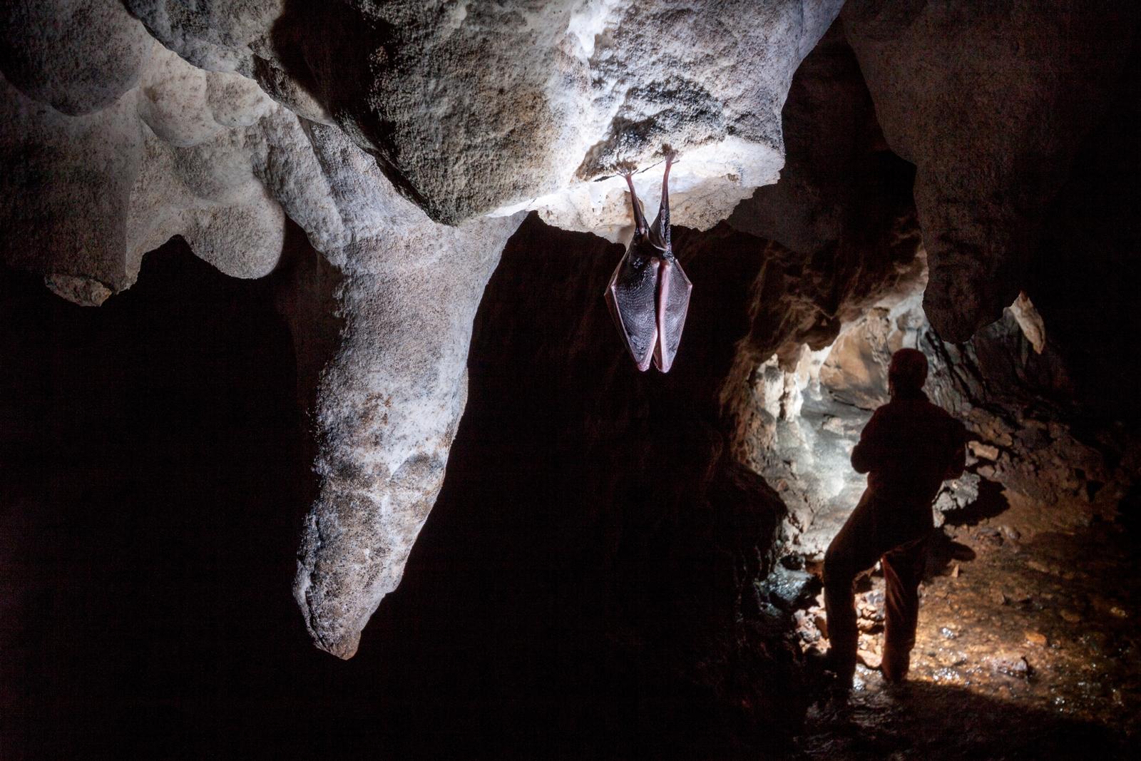 Peștera Gruieț
