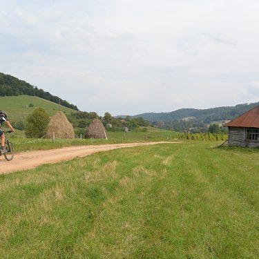 Cicloturism Padurea Craiului pe bicicleta T