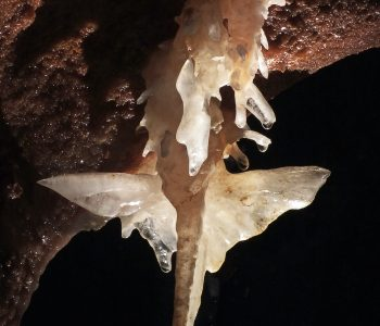 Padurea Craiului pesteri amenajate pestera cu cristale Farcu libelula