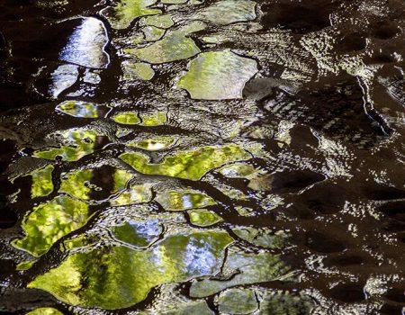 Speoturism Valea Crisului Repede pestera Moanei