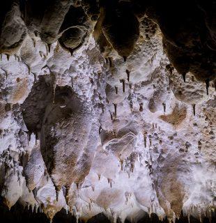 Speoturism speologie in Padurea Craiuluiu pestera Galaseni