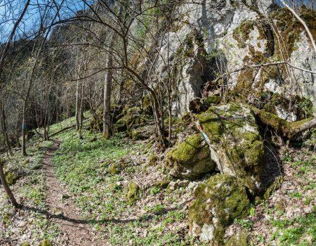Traseul Deventului spre belvedere