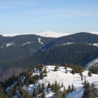 drumetie padurea craiului coada lacului stana de vale iarna