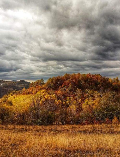 drumetie padurea craiului coada lacului stana de vale peisaj toamna