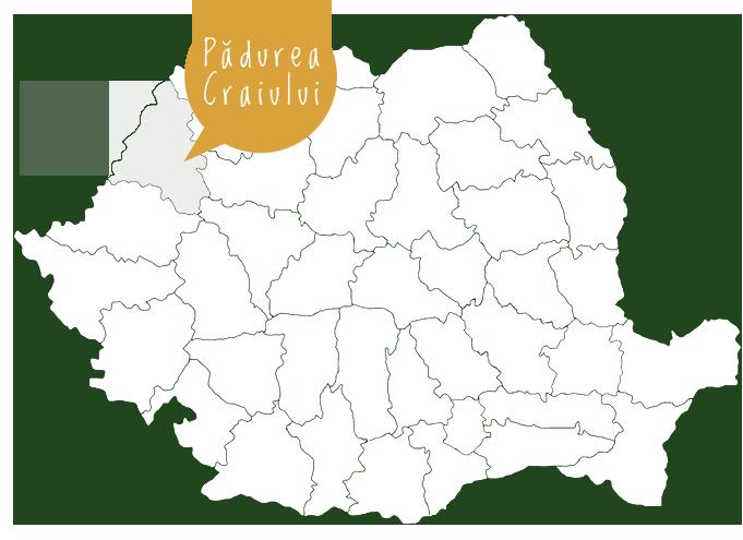 harta locatie muntii padurea craiului