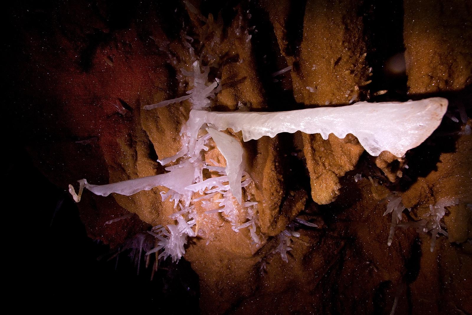 Farcu Cave