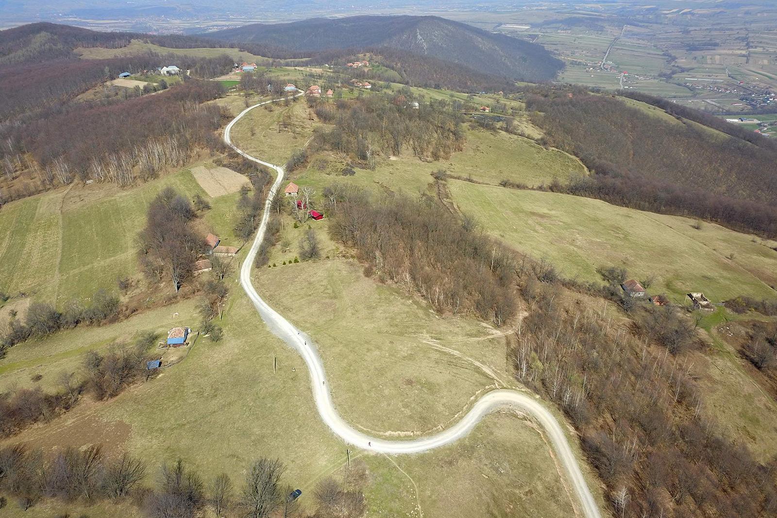 Alergare montana in Padurea Craiului Zece Hotare Traseul Pojorata featured