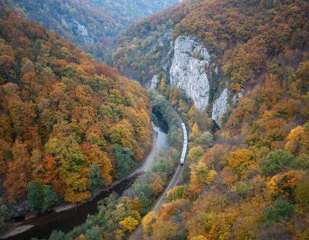 Alergare montana in Padurea Craiului defileul crisului repede toamna Traseul Pojorata