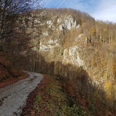 Alergare montana Valea Iadului Padurea Craiului traseul verde