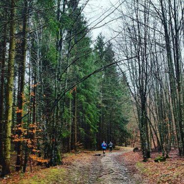 Alergare montana Valea Iadului Remeti traseul galben