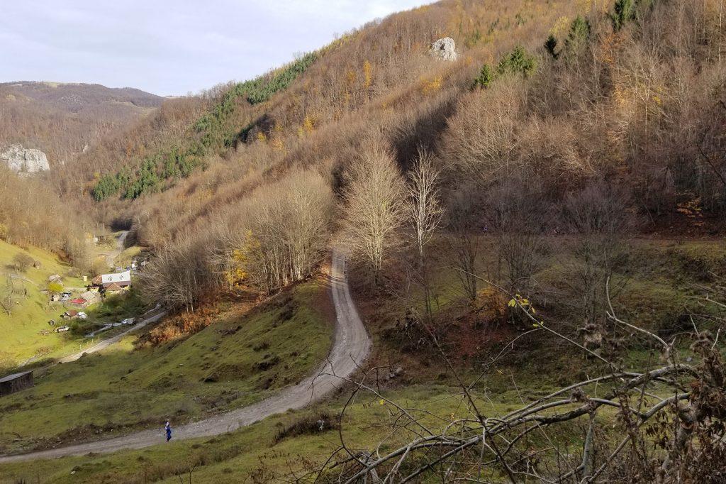 Alergare montana in Padurea Craiului valea iadului traseu galben featured