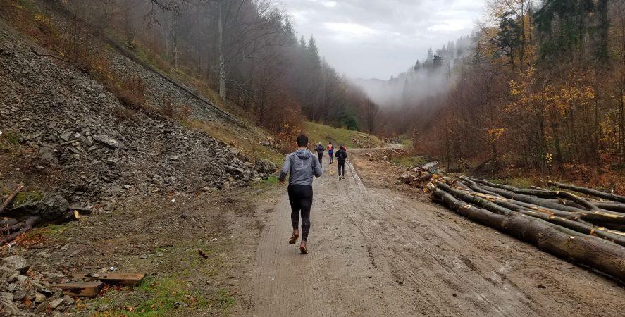 Alergare montana in Padurea Craiului valea iadului traseu galben featured2