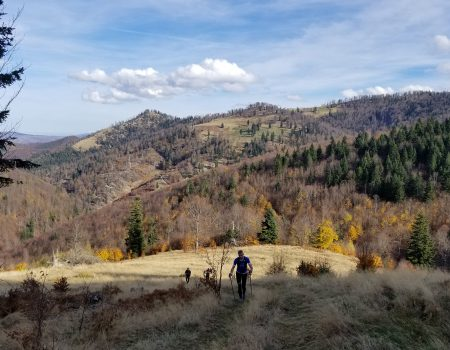 Alergare montana in Padurea Craiului valea iadului traseu rosu featured