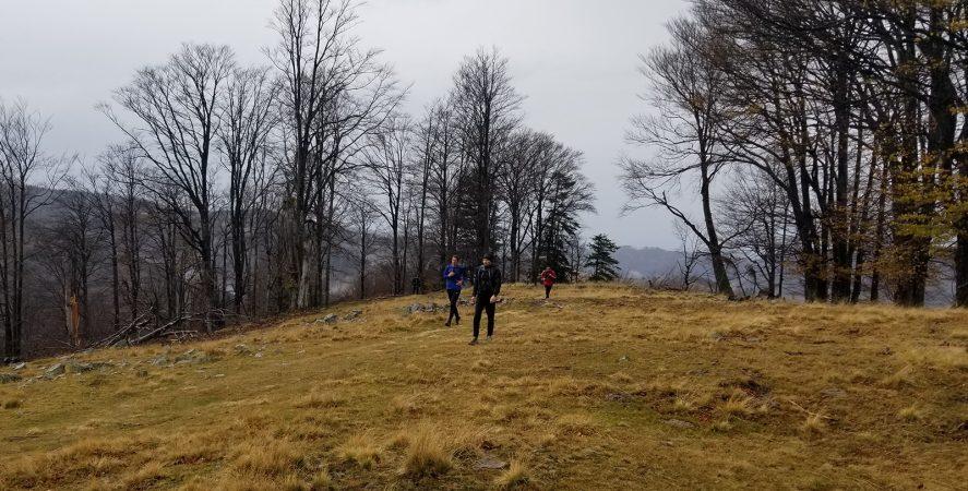 Alergare montana in Padurea Craiului valea iadului traseu rosu featured2