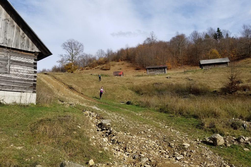 Alergare montana in Padurea Craiului valea iadului traseu verde featured