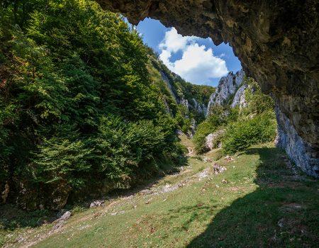 Drumetie Valea Rosia Padurea Craiului Cheile Cutilor