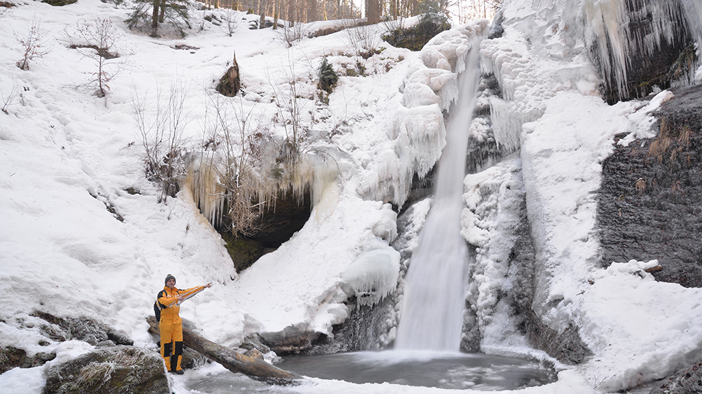 Padurea CRaiului Valea Iadului Cascada Saritoarea Iedutului