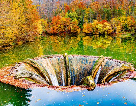 Padurea Craiului Luncasprie Lacul Vida