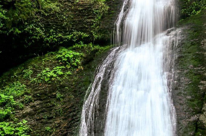Padurea Craiului Stana de Vale Cascada Saritoarea Iedutului