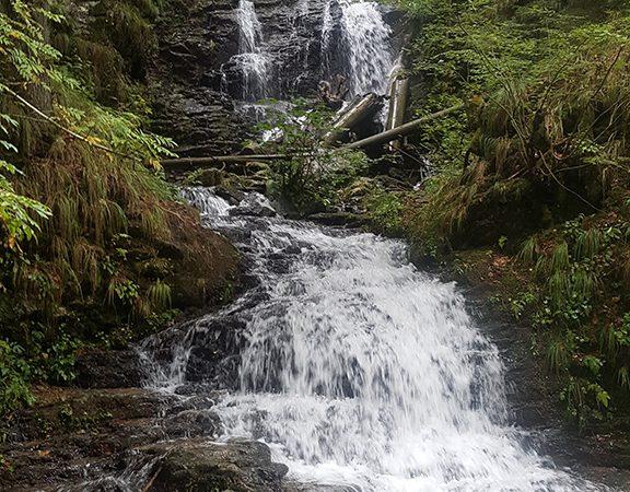 Padurea Craiului Stana de Vale Cascada Valul Miresei