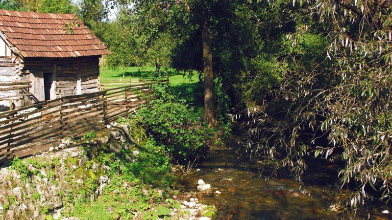 Padurea Craiului Valea Crisului Repede Valea Bratcutei