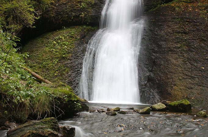 Padurea Craiului Valea Iadului Circuitul Cascadelor Saritoarea Iedutului