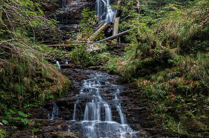 Padurea Craiului Valea Iadului Valul Miresei