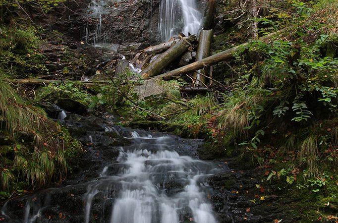 Padurea Craiului Valea Iaduluiu Cascada Valul Miresei