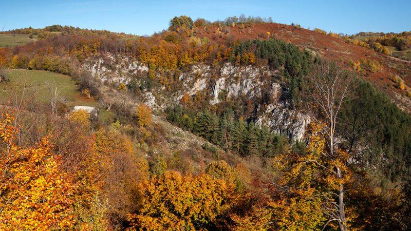 Padurea Craiului Valea Rosia Cheile Albioarei