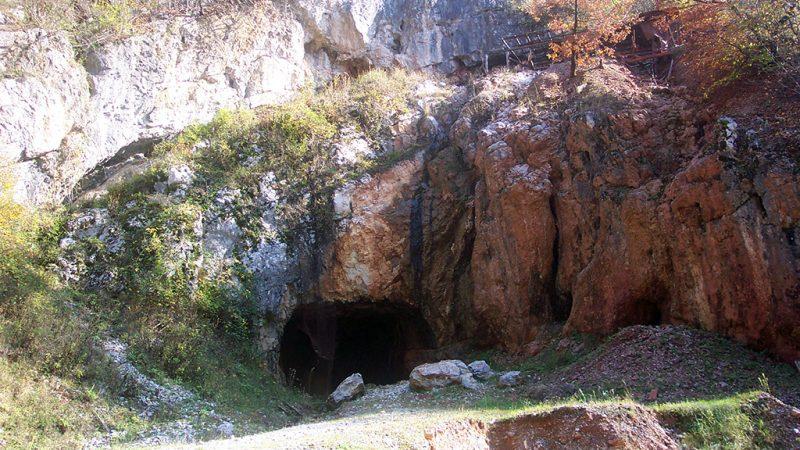 Padurea Craiului Valea Rosia CheileAlbioarei