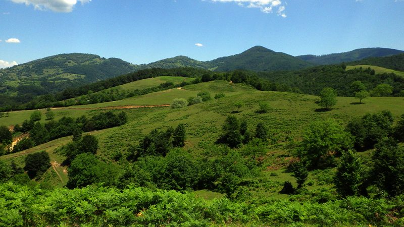 Padurea Craiului Valea Rosia Valea Sohodol
