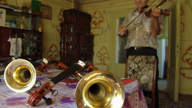 Padurea Craiului Valea Rosia atelier vioara cu goarna Dorel Codoban