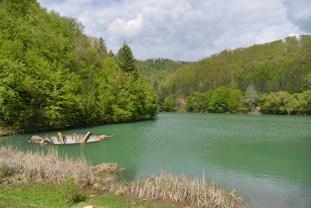 Padurea Craiului Valea Vida Barajul Luncasprie