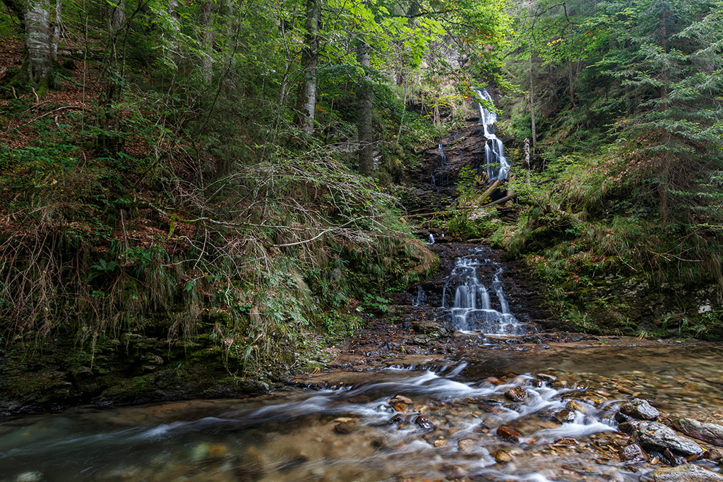 Padurea Craiului circuitul cascadelor Valul Miresei