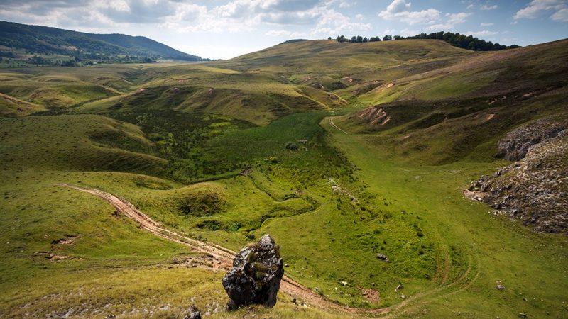 Padurea craiului platoul carstic damis ponoras valea crisului repede