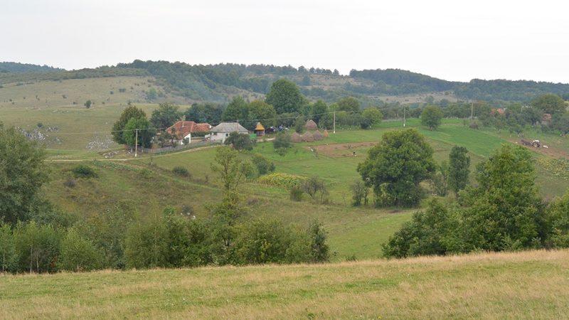 Padurea craiului platoul zece hotare valea crisului repede