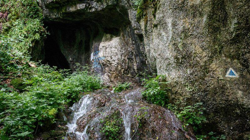 Padurea craiului valea misidului pestera moanei valea crisului repede