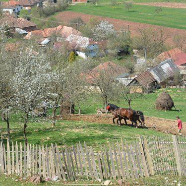 Cicloturism Valea Rosia traditie T