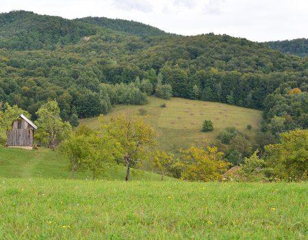 Cicloturism peisaj Valea Rosia T