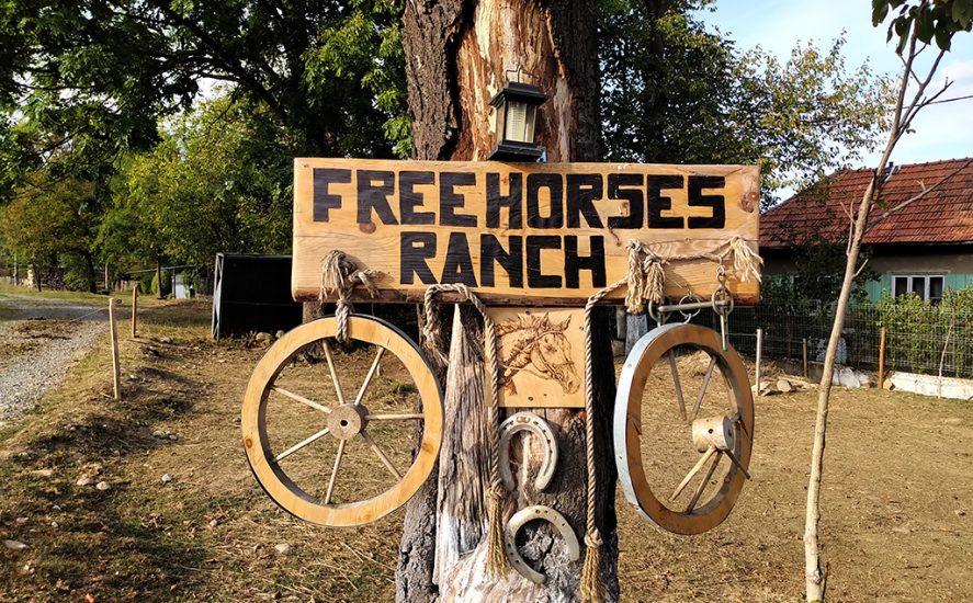 Padurea Craiului caii liberi valea crisului repede