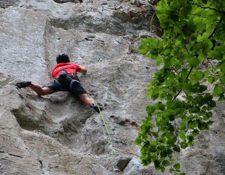 Padurea Craiuluies Valea Rosia escalada