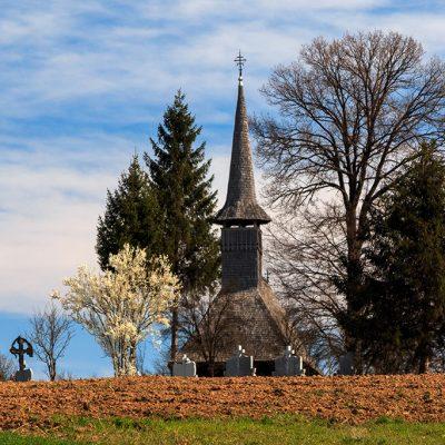 Padurea Craiului Delureni biserica lemn