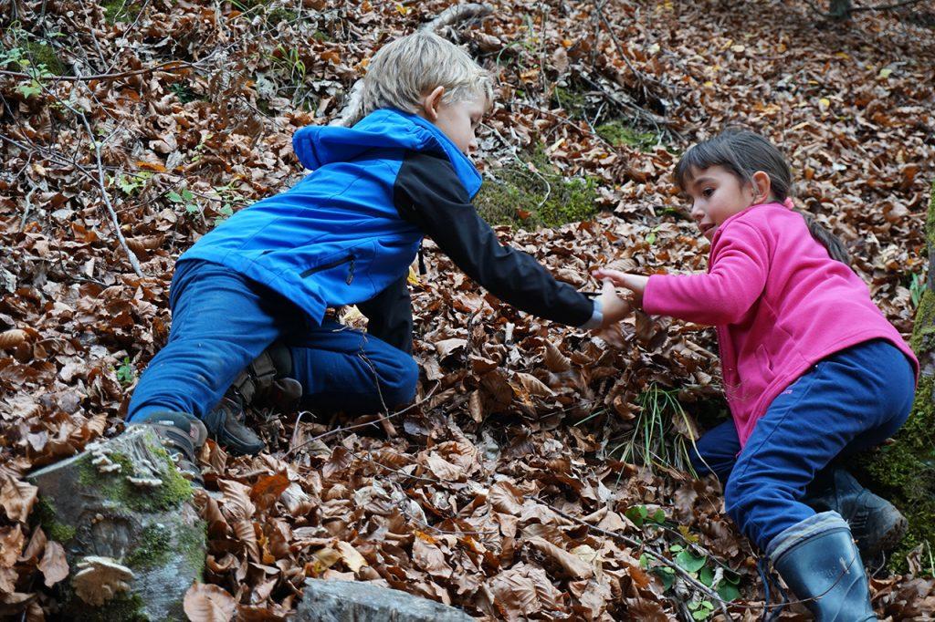 Padurea Craiului aventura pentru toata familia Valea Boiului
