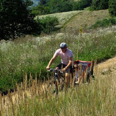 Padurea Craiului cicloturism descopera Valea Rosia